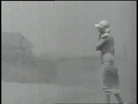 vidéos et rushes de ms cattle being herded through dust storm / united states - tempête de poussière