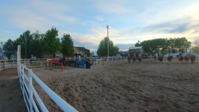 vídeos y material grabado en eventos de stock de ganados roping en un rodeo de puesta del sol - oficio agrícola