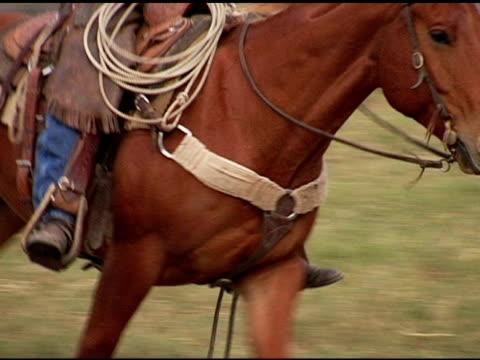 caucasian cowboy rides brown horse on texas ranch - galoppera bildbanksvideor och videomaterial från bakom kulisserna
