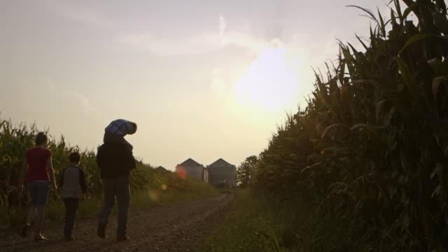Caucasian family walking between crops at dusk