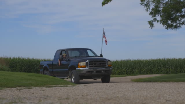caucasian girl greeting father in truck - illinois stock-videos und b-roll-filmmaterial