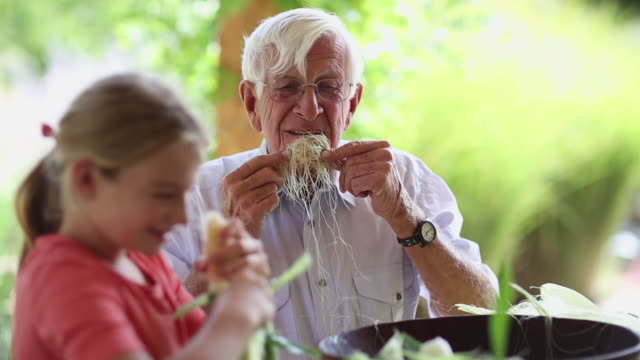 caucasian grandfather and granddaughter shucking corn - moustache stock videos & royalty-free footage