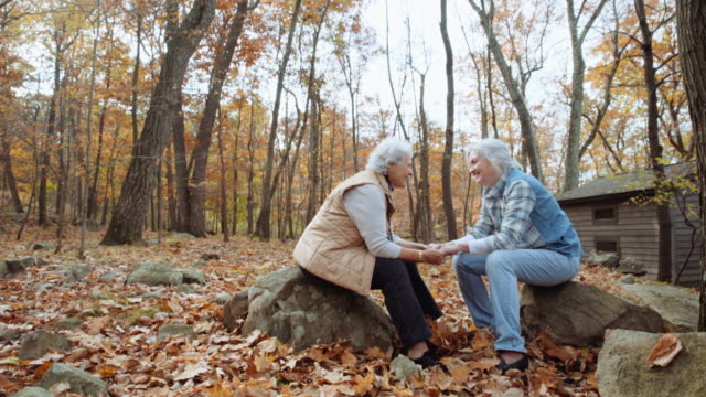 vídeos de stock, filmes e b-roll de caucasian lesbian couple throwing autumn leaves near cabin - 65 69 anos
