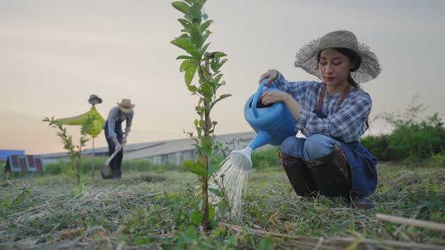 白人男性とアジアの女性の若い農家は、日没の下で有機農場を働き、若い女性は植物を植え付けるために座って、若い男は農業労働者の農業概念の土壌をシャベルしながら、農業活動、農業� - 水撒き点の映像素材/bロール