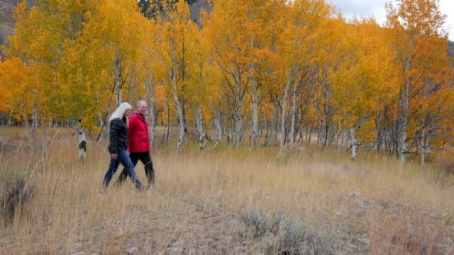 caucasian senior couple walking near autumn trees - idaho stock videos & royalty-free footage