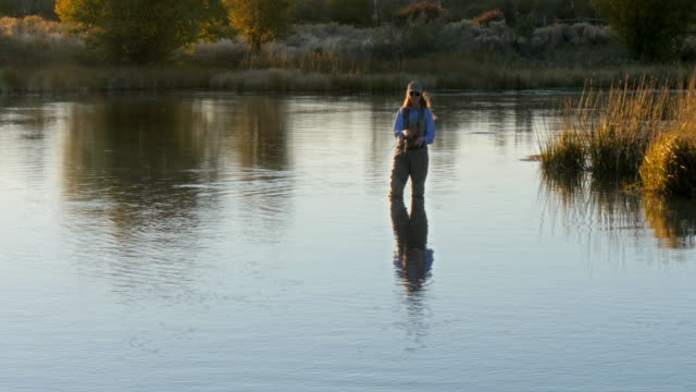 caucasian woman fly fishing in river - fishing rod stock videos & royalty-free footage