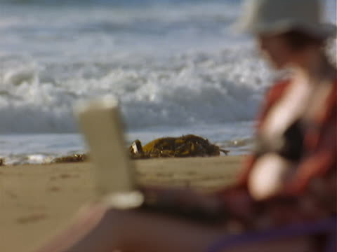 vídeos de stock, filmes e b-roll de caucasian woman in black bikini, red shirt, and white hat sits on the beach in lounge chair typing on black laptop - só mulheres jovens