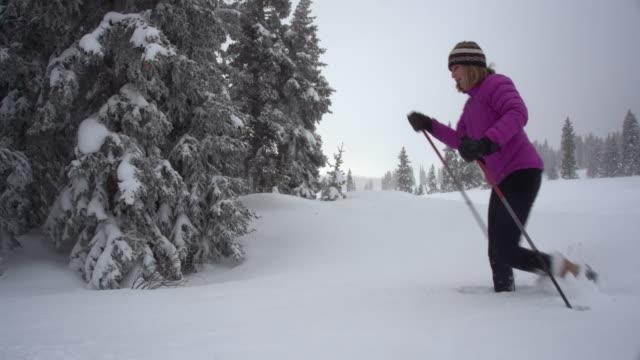 vidéos et rushes de une femme blanche en hiver vêtements raquettes à travers un champ de neige parmi les pins sous un ciel gris d'hiver dans l'ouest du colorado - manteau et blouson d'hiver