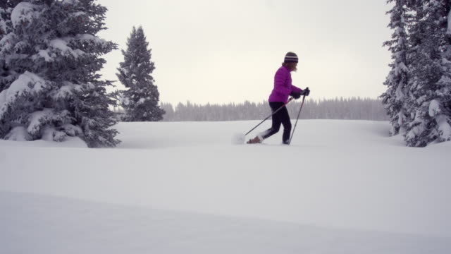 vidéos et rushes de une femme blanche en hiver vêtements raquettes avec bâtons de ski à travers un champ de neige parmi les pins sous un ciel gris d'hiver dans l'ouest du colorado - manteau et blouson d'hiver