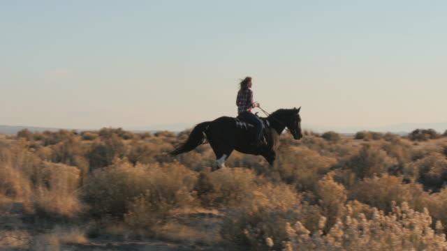 vídeos de stock e filmes b-roll de caucasian woman riding horse in field - só mulheres de idade mediana