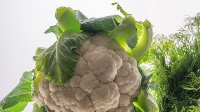cauliflower and dill isolated on white - cauliflower stock videos & royalty-free footage