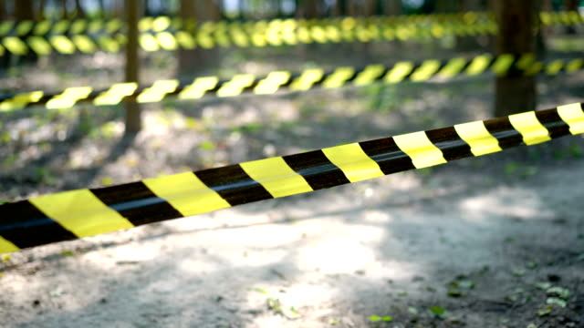 Caution tape in woods.