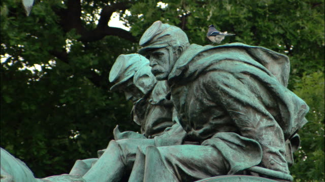 cu cavalry statue / bird landing on statue / flying away / washington dc, usa - male likeness stock videos & royalty-free footage