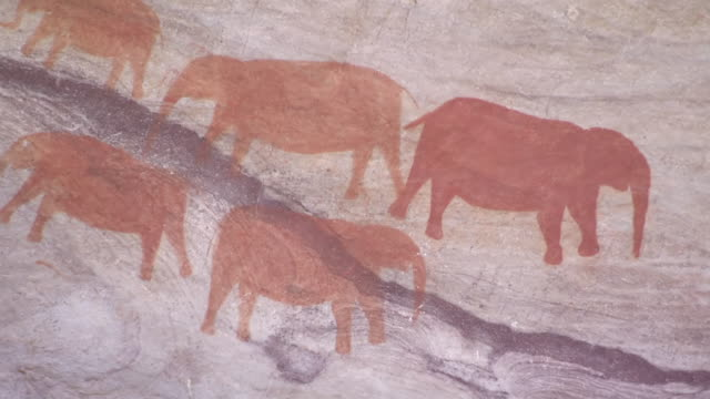 CU Cave paintings of elephants in Cederberg Mountains / Western Cape, South Africa