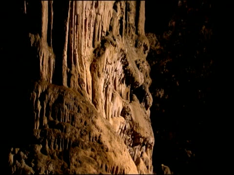 Cave wall formed from merged limestone stalactites and stalagmites, Parque Natural Sierras Subbeticas (Cordoba), Andalucia, Spain