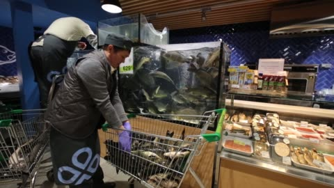 caviar sits on a chilled fresh fish display counter inside a perekrestok supermarket, operated by x5 retail group, in moscow, russia, on tuesday, feb... - financial item stock videos & royalty-free footage