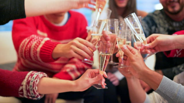 vídeos de stock e filmes b-roll de celebrating christmas with friends - brinde