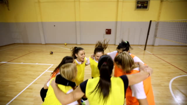 celebrating voctory - squadra sportiva video stock e b–roll