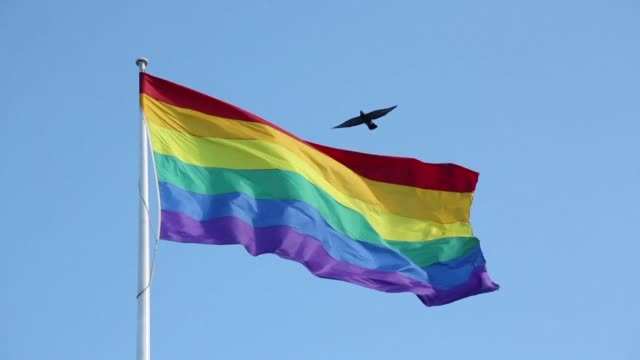Celebrations sweep across Australia as voters emphatically endorse same sex marriage after more than a decade of divisive debate and political...
