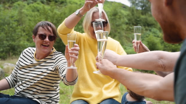 celebrations with friends - champagne stock videos & royalty-free footage