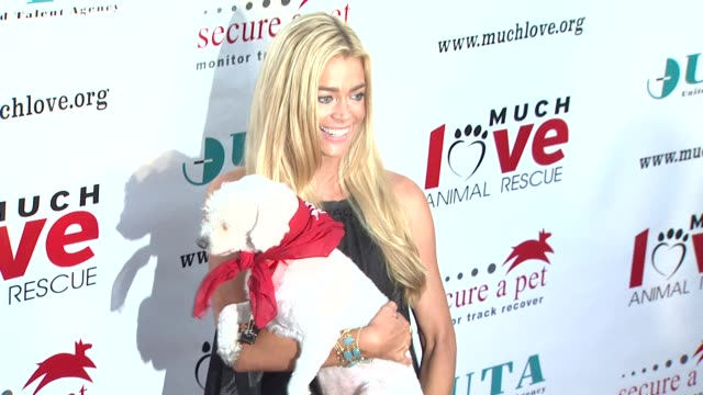 denise richards - profile produced segment stock videos & royalty-free footage