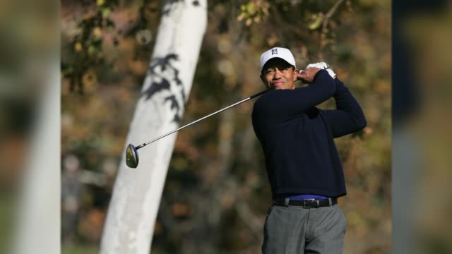 tiger woods - tiger woods stock videos & royalty-free footage