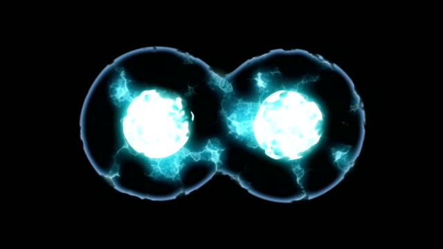 cells multiplying or mitosis under microscope - division stock videos & royalty-free footage