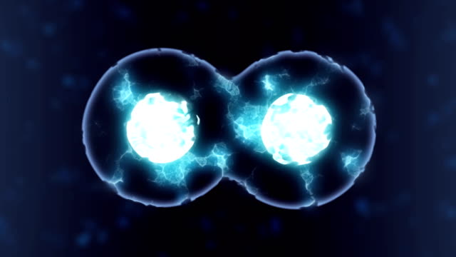 cells multiplying or mitosis under microscope - magnification stock videos & royalty-free footage