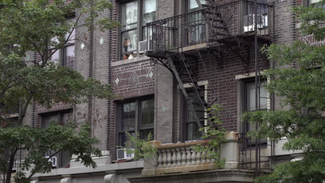 cement stone terrace with small plants growing out on brooklyn apartment building exterior. - establishing shot stock videos & royalty-free footage