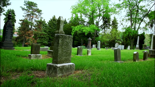cementery gravestones landscape background - cemetery stock videos & royalty-free footage