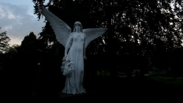 Cemetery Angel in the night