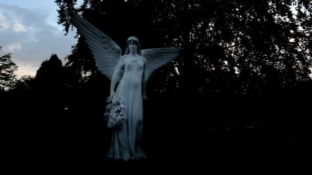 friedhof angel in die nacht - statue stock-videos und b-roll-filmmaterial