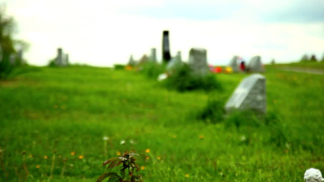 cemetery background with usa flag - cemetery stock videos & royalty-free footage