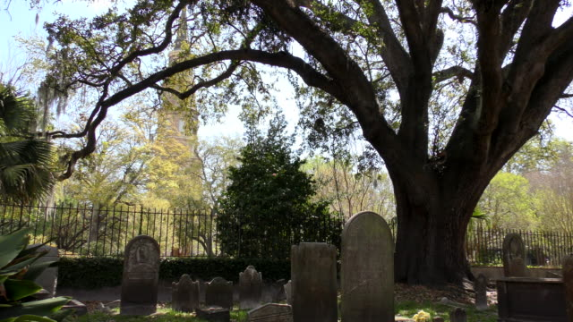 vídeos de stock e filmes b-roll de cemetery - charleston, south carolina - cemitério