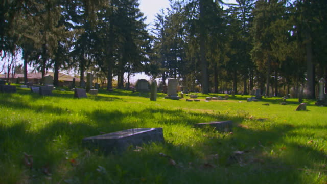 Cemetery monuments and grave stones, (dolly and pan)
