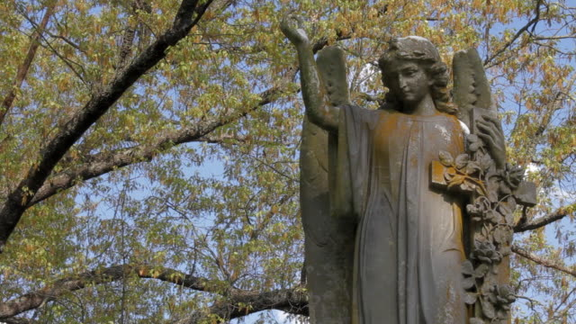 cemetery statue close up - dappled light stock videos and b-roll footage