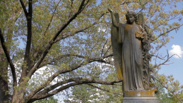 cemetery statue on a spring day - dappled light stock videos and b-roll footage