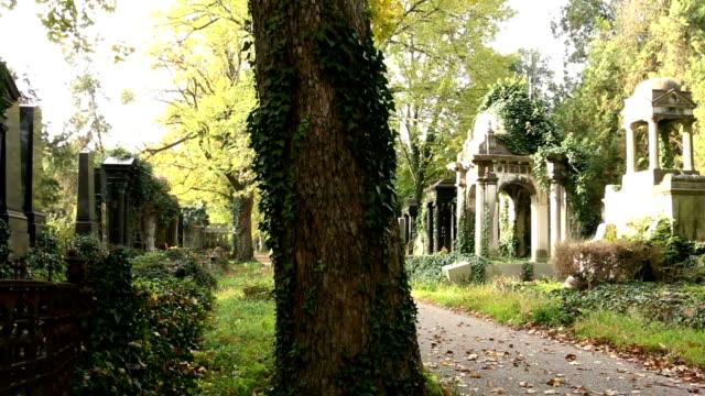 cimitero - cimitero video stock e b–roll
