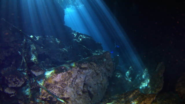cenotes - yucatan stock videos & royalty-free footage