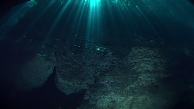 vídeos de stock, filmes e b-roll de cenotes - yucatán