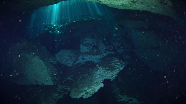 cenotes - yucatan peninsula stock videos and b-roll footage