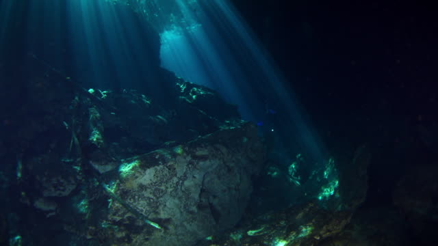cenotes - cave stock videos & royalty-free footage