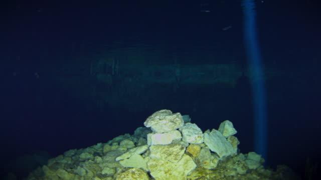 cenotes - unterwasserkamera stock-videos und b-roll-filmmaterial