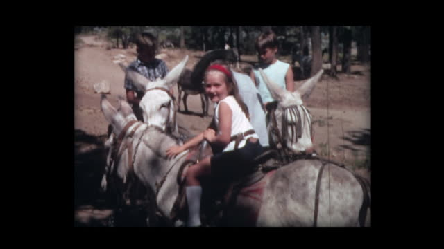 1966 50 cent mule ride in desert - trail ride stock videos and b-roll footage