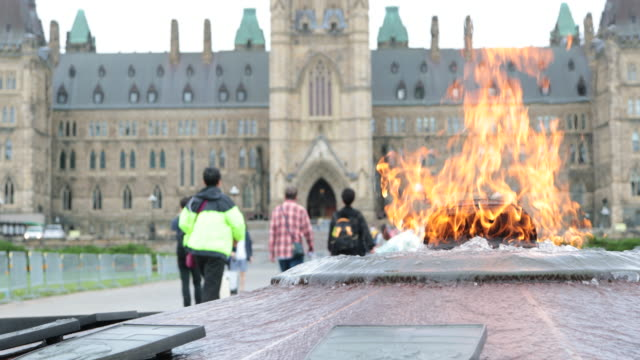 vídeos y material grabado en eventos de stock de llama centenaria y el parliement edificio en ottawa, canadá - colina del parlamento ottawa