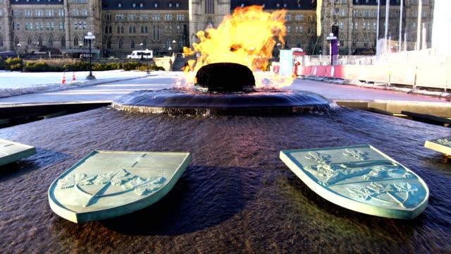 vídeos y material grabado en eventos de stock de llama centenaria en ottawa, canadá - colina del parlamento ottawa