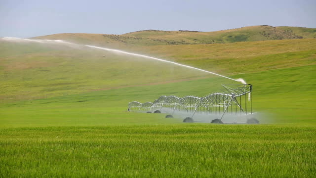 center pivot irrigation equipment - sprinkler stock videos & royalty-free footage