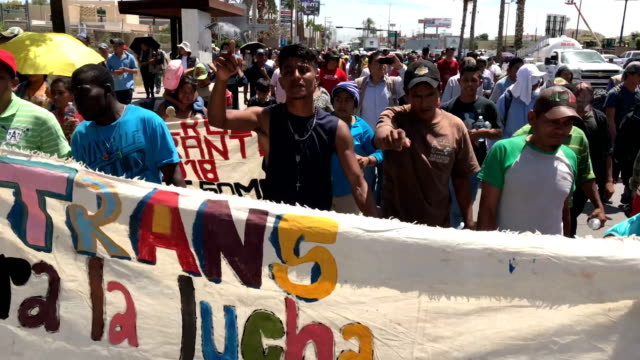 central american immigrants, part of an immigrant 'caravan,' march in protest against u.s. president donald trump on april 23, 2018 in hermosillo,... - mexican american stock videos & royalty-free footage