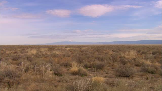 WS, Central New Mexico valley, New Mexico, USA