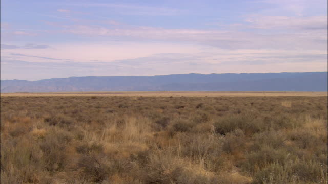 WS, PAN, Central New Mexico valley, New Mexico, USA